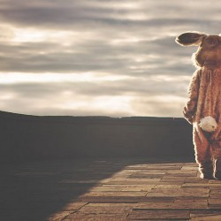What Should I Do With My Life? 17 Simple Ways to Find the Answer - Picture of person in bunny costume looking into the distance